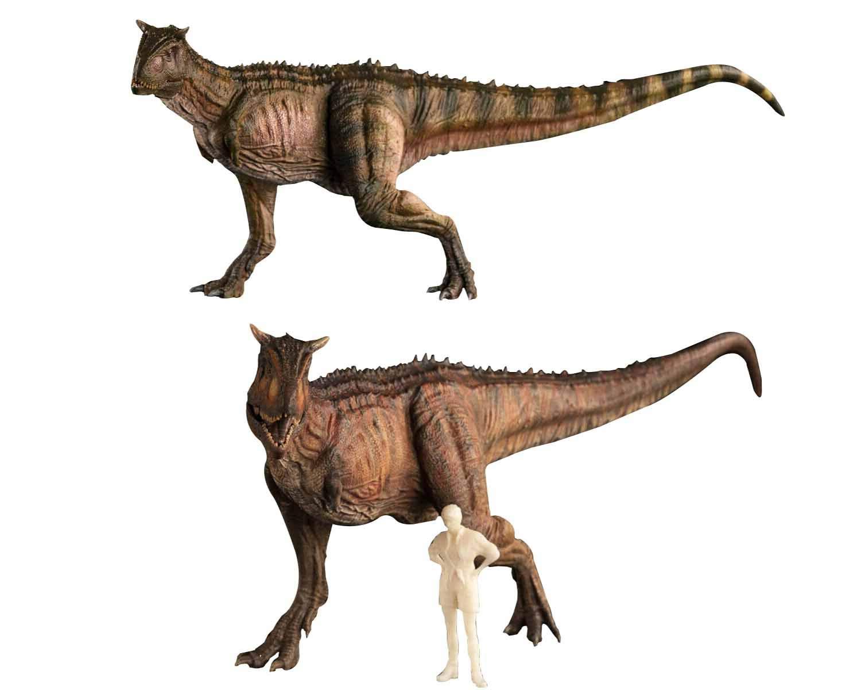 【予約販売】Nanmu 本心楠改 1/35 カルノタウルス Carnotaurus ジュラシック 恐竜 リアル フィギュア PVC プラモデル おもちゃ 模型 プレゼント プレミアム 28cm級 人形付き オリジナル 塗装済 完成品 (レッド + グリーン) B07SV1MBBS レッド + グリーン