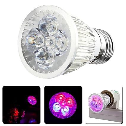 Matefielduk bombilla plantas Lámpara de cultivo de 10W de espectro completo LED Grow Grow E27 CA