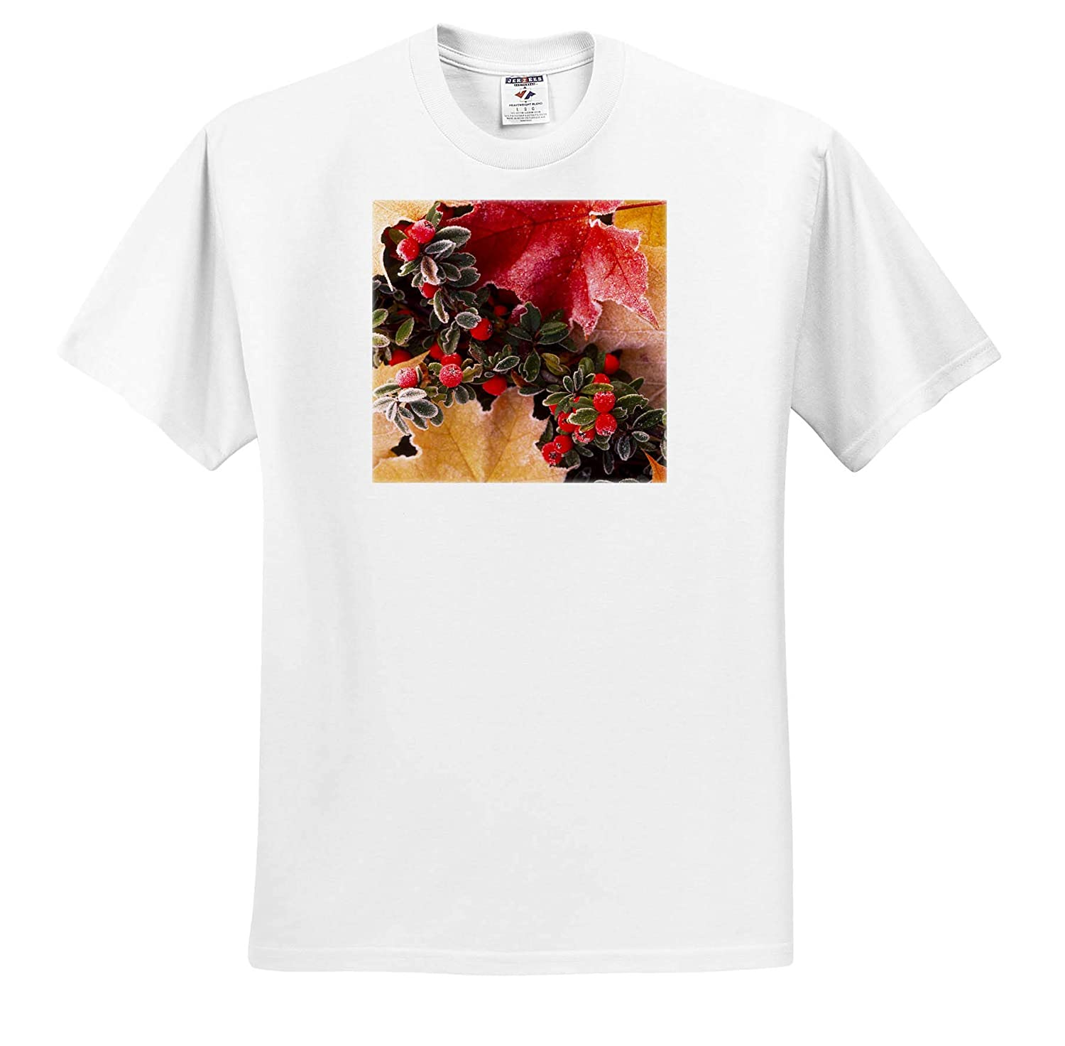 ts/_313927 Close-up of Frost-Covered Leaves and Berries in Autumn Autumn 3dRose Danita Delimont - Adult T-Shirt XL