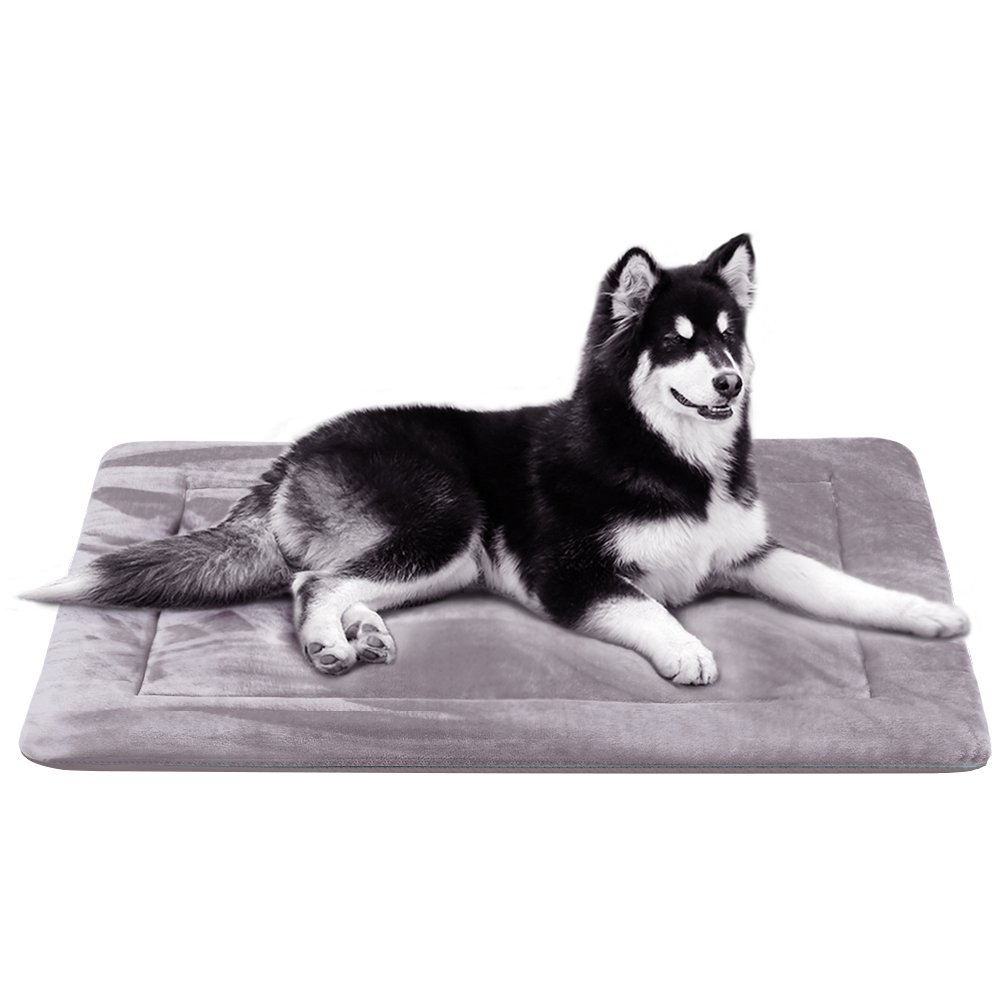 JoicyCo Dog Bed Large Crate Pad Soft Mat 28/35/42/47 in- 100% Machine Washable Anti-Slip Fleece Mattress Luxury Rich Color