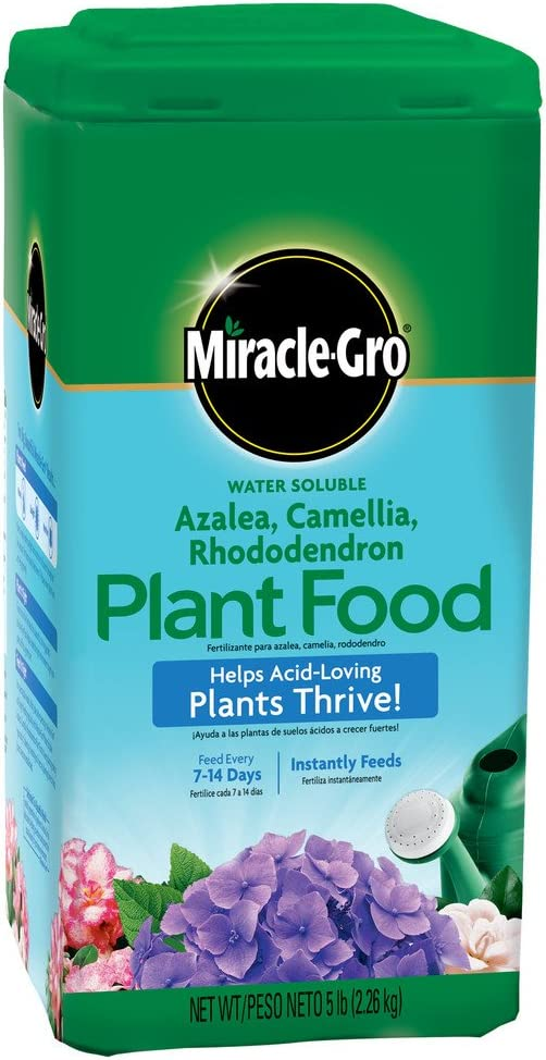 Miracle-Gro 1001791 Water Soluble Azalea Camellia Rhododendron Plant Food (6 Pack)