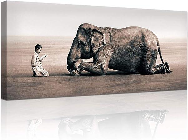 Amazon.com: DekHome - Lienzo con diseño de elefante en la ...