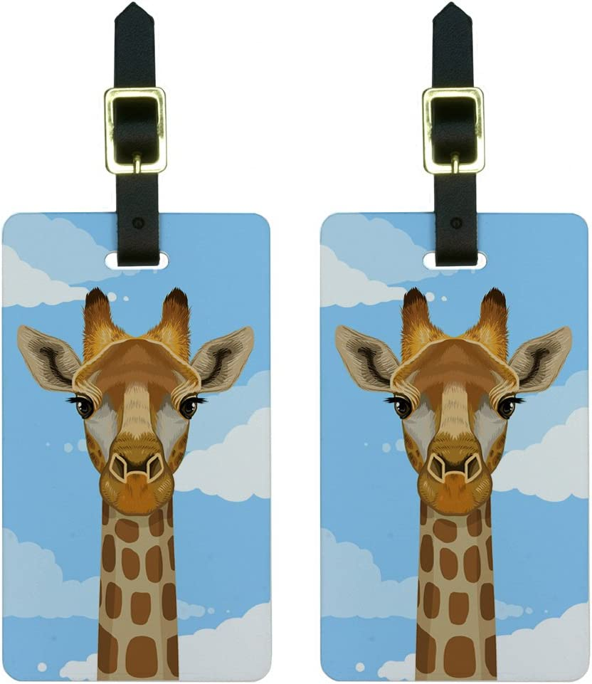 Set of 2 Rainbow Zebra Pattern Luggage Tags with Leather Strap