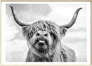 ArtLiving Cute Highland Cow Sticking Tongue Out Art Print Poster for Home Decor Wall Decor Unframed (30X40 CM)