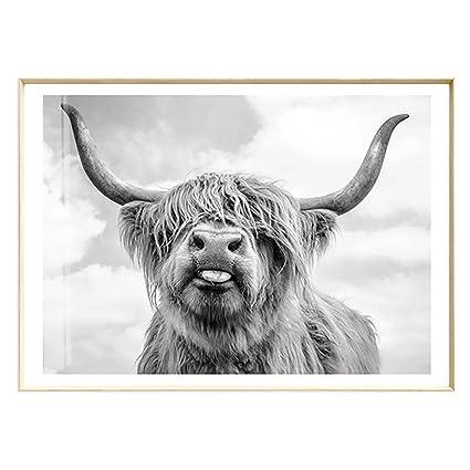 23786d2d73a Amazon.com  Artliving Cute Highland Cow Sticking Tongue Out Art ...