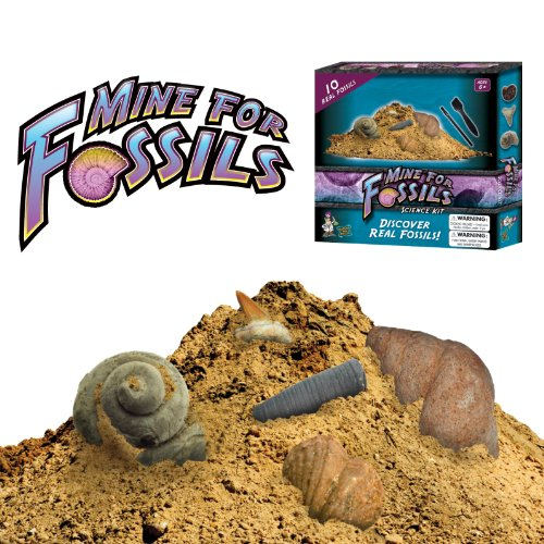 cool fossils - 2