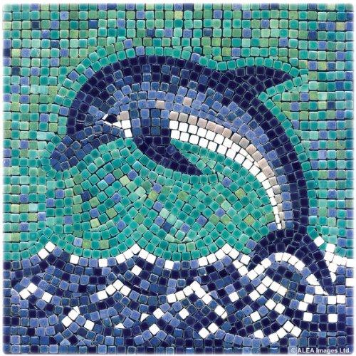DIY Mosaic Art Kit 7'' Square, 20x20cm, Dolphin ()