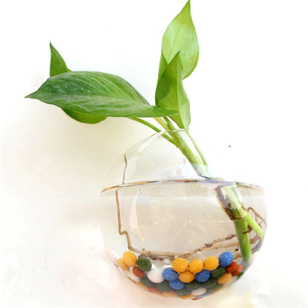 WXLAA 10cm Hanging Flower Pot Glass Ball Vase Terrarium Wall Fish Tank Aquarium Container