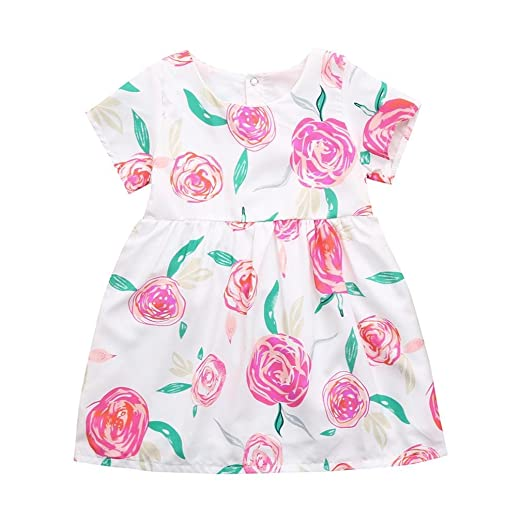 6beaab5f9510d Amazon.com: Lurryly 2019 Toddler Baby Girls Flowers Print Pageant ...