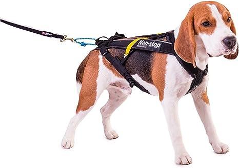 Non-Stop dogwear - Arnés para perros Non-Stop Freemotion, negro ...