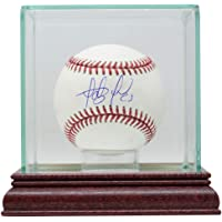 $209 » Fernando Tatis Jr. Signed San Diego Official MLB Baseball w/Case BAS