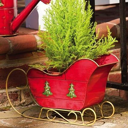 Outdoor Christmas Sleigh.Amazon Com Evergreen 9 5 Red Outdoor Christmas Holiday