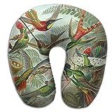 Oils Hummingbird Lightweight Neck Pillow Spa Memory Foam U-SHAPE Airplane Travel Everybody