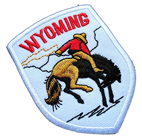White Wyoming Rider Horse Rodeo Embroidered Iron on Patch