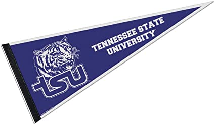 Image result for tennessee state university college pennant images