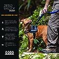 EzyDog ZERO SHOCK Leash - Best Shock Absorbing Dog Leash, Control & Training Lead