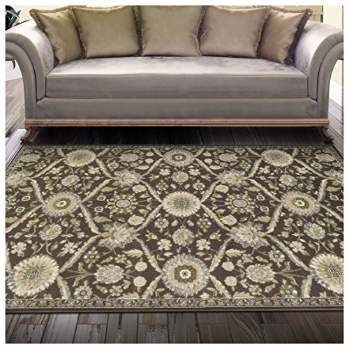 Superior Chandler Collection Area Rug, 8mm Pile Height with Jute Backing, Beautiful Floral Lattice Pattern, Fashionable and Affordable Woven Rugs - 4' x 6' Rug
