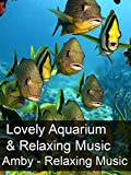 Lovely Aquarium & Relaxing Music - Amby - Relaxing Music