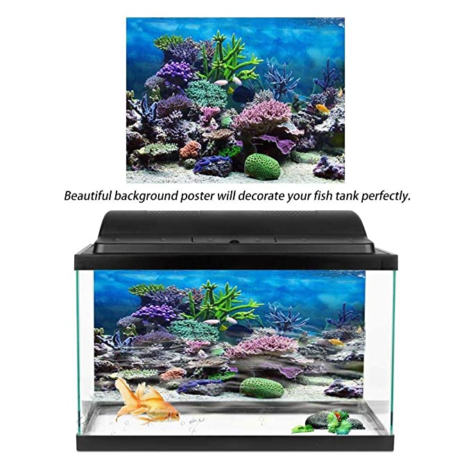 Amazon.com : Aquarium Background Poster Fish Tank Backdrop PVC Adhesive Underwater Coral Reef Decor Paper Cling Decals Sticker(6130cm) : Pet Supplies