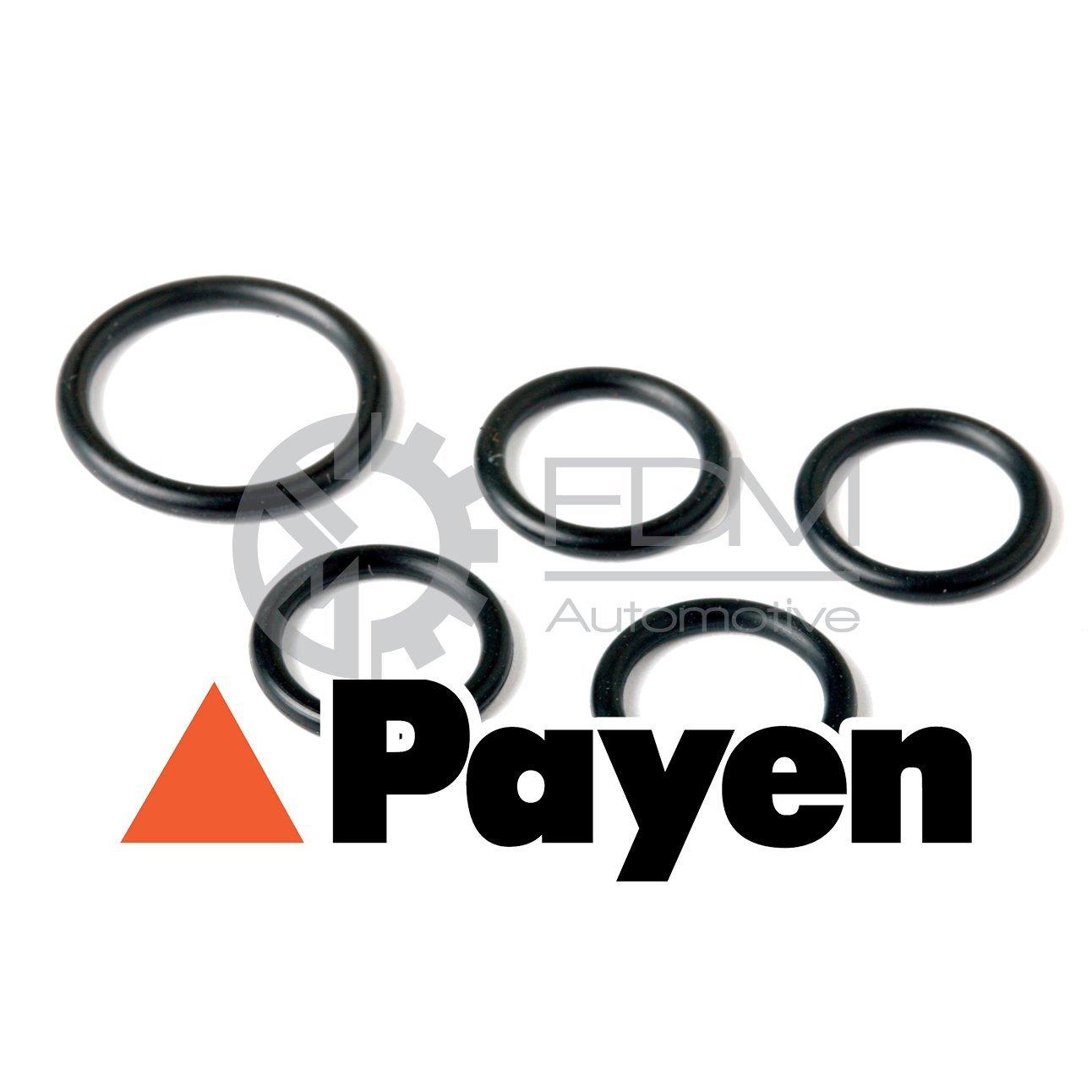Payen JD5411 Gasket Induction Pipe