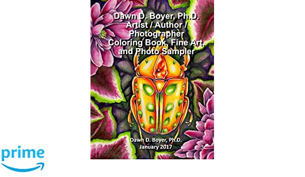 Amazon Dawn D Boyer PhD