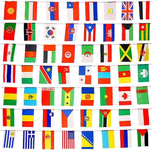 164 Feet International String Flags, Hanging Bunting Pennant Banner 200 Countries Flags World Flags ( 8.2'' x 5.5'')]()