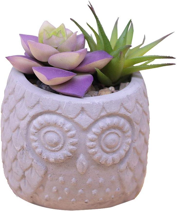 VanEnjoy Artificial Succulent Plants in Cement Owl Pot, Concrete Fake Fuax Artificial Plant Cactus Succulent in Pots,for Home Decor Indoor, Lifelike Decoration for Office, Desk, Bookshelf