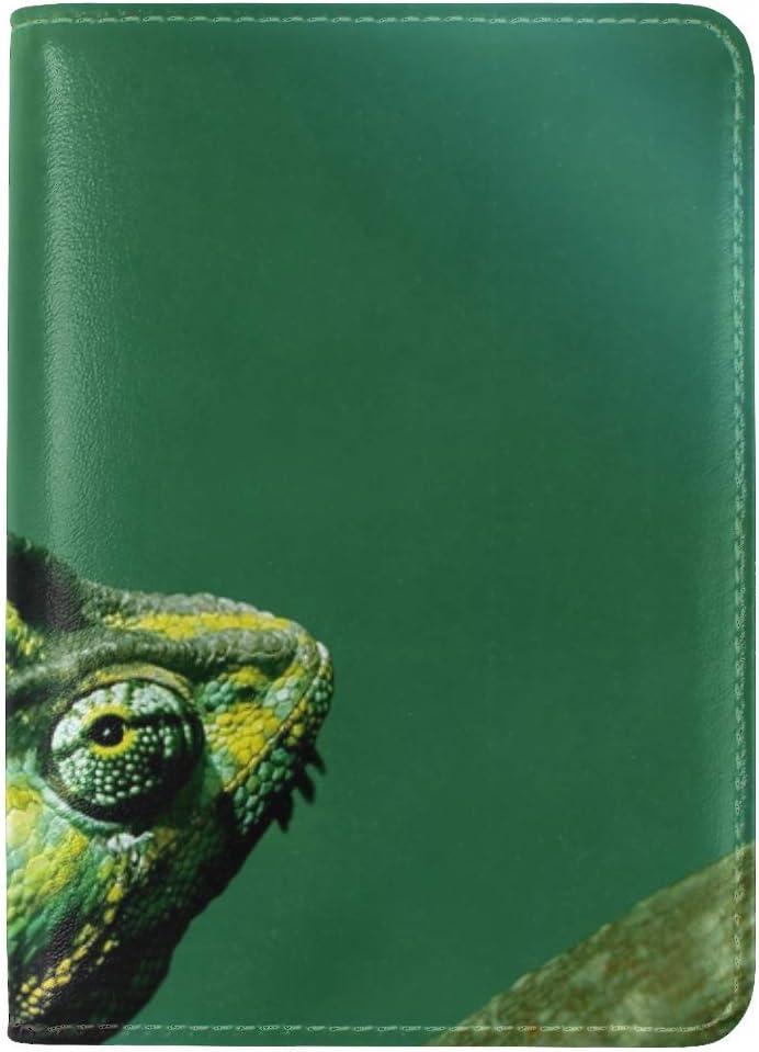 JiaoL Chameleon Color Reptile Leather Passport Holder Cover Case Travel One Pocket