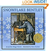 #9: Snowflake Bentley