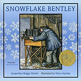 Image result for snowflake bentley