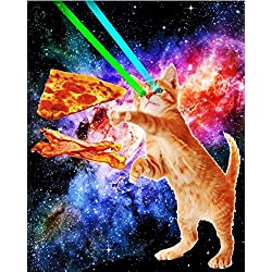 Space Hunger Flying Cat Pizza Bacon Poster