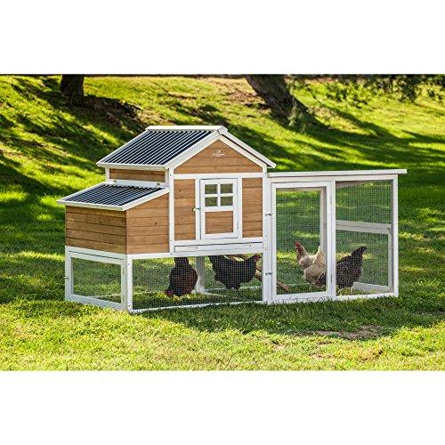 SummerHawk-Ranch-Victorian-Teak-XL-Barn-Chicken-Coop