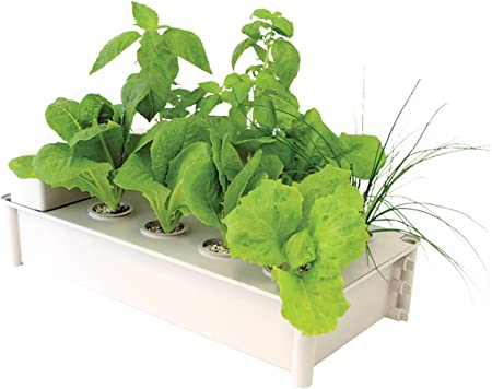 Amazon Com Hydrofarm Gcsb Box Kit Hydroponic Salad Garden Garden Outdoor