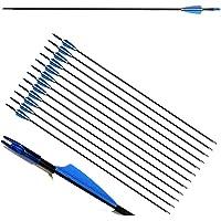ZSHJG 12pcs Flechas de Fibra de Vidrio de Tiro con Arco de 31 Pulgadas Spine 900 Flechas de Caza con Carcaj de Flecha…