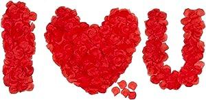 HongyiTime 1200 PCS Artificial Silk Rose Petals Decoration for Romantic Night, Wedding, Event, Party, Decoration, Color Red Rose Petals