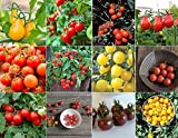 organic cherry tomatoes seeds - David's Garden Seeds Collection Set Tomato Cherry NEP933V (Multi) 600 Seeds (Open Pollinated, Heirloom, Organic)