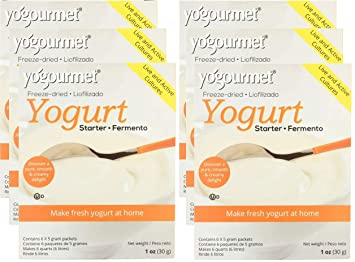 YOGOURMET: Freeze-Dried Yogurt Starter, 1 oz - 6Pack