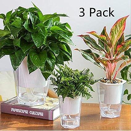 Amazon.com: Maceta de autorriego, sgarden macetas plantas ...