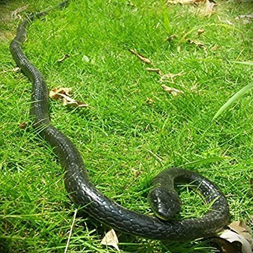 Epaler 47 Inches Rubber Lifelike Snakes Scary Gag Gift Incredible Rain Forest Wild Life Snake Toy (Funny Mind Tricks To Fool Your Friends)