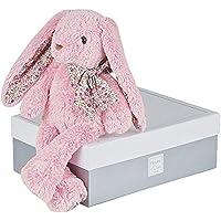 histoire D 'ours 毛绒玩具 Friends cuddles 兔子