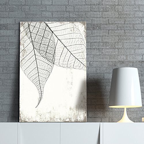Black and White Leaf Vein on Rustic Background
