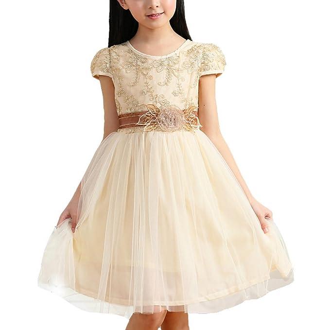 ZAMME Niñas Champán del Cordón del Vestido Formal Comunión Desfile