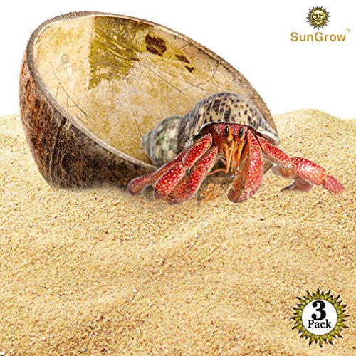 SunGrow 3 Hermit Crab Food Bowls - Little Huts for Hermies - Great for Bath Basin, Hiding Spots - Half Coco Shell - 100% Natural - Perfect Alternative of Plastic cage - Home Décor ()