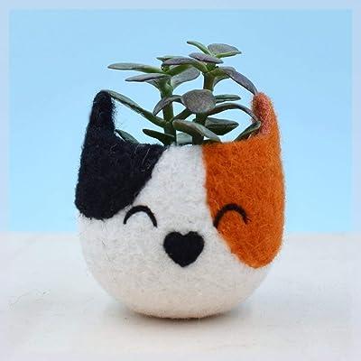 Small succulent pot/cactus vase/cat lover gift/crazy cat lady/calico cat/Housewarming Gift/mini planter/indoor planter