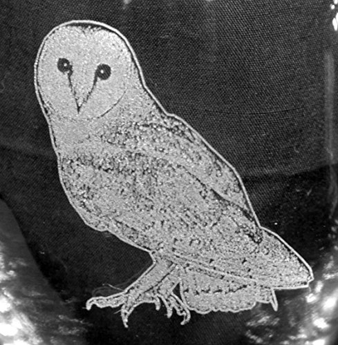 Barn Owl Laser Etched White Wine Juice Glass Set (2, SWW) Review