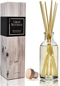 Urban Naturals Cucumber Sea Salt Reed Diffuser Set | Fresh, Crisp Cucumber, Agave Leaves & Sea Salt | Essential Oil Room Scent Kit with Reed Sticks | Made in The USA | A Great Home Gift Idea