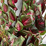 Factory-Direct-Craft-Poly-Silk-Mauve-Green-Coleus-Bushes-2-Ivy-Bushes