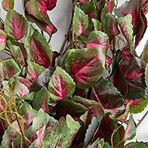 Factory Direct Craft Poly Silk Mauve & Green Coleus Bushes | 2 Ivy Bushes 2