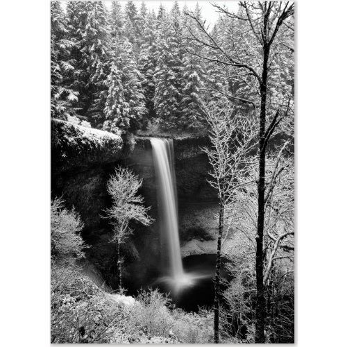 Leaf Holiday Card (Winter Waterfall Large Boxed Holiday Cards  (Christmas Cards, Holiday Cards, Greeting Cards))
