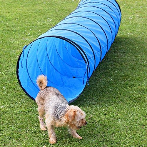 Spiel- und Spaß-Tunnel, 3 m lang, ø 60 cm, blau, Agility - Hundetraining